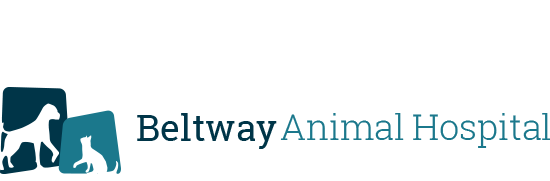 Logo for Veterinarians Jacksonville | Beltway Animal Hospital