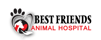 Logo for Veterinarians Calhoun, Georgia | Best Friends Animal Hospital