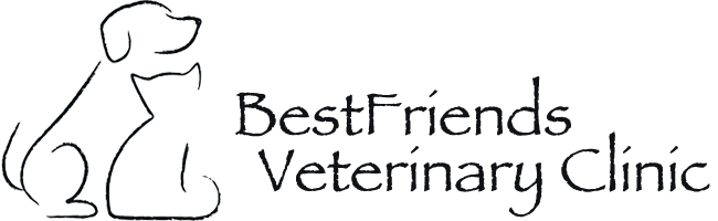Logo for BestFriends Veterinary Clinic in Albertville, MN