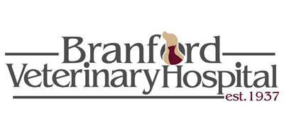 Logo for Veterinarians Connecticut | Branford Veterinary Hospital