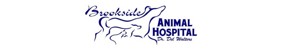 Logo for Veterinarians Waxahachie | Brookside Animal Hospital