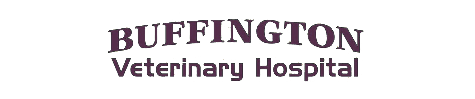 Logo for Buffington Veterinary Hospital Minden, Louisiana