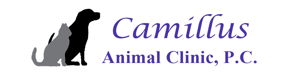 Logo for Camillus Animal Clinic Camillus, New York