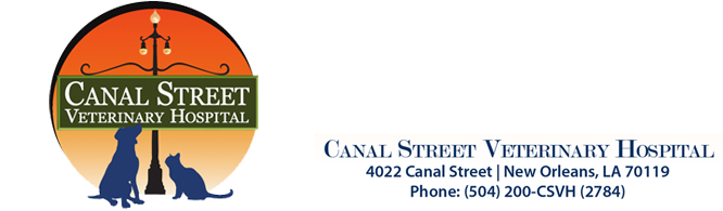 Logo for Veterinarians New Orleans | Canal Street Veterinary Hospital