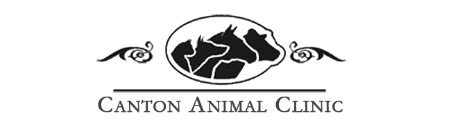 Logo for Veterinarians Canton New York | Canton Animal Clinic