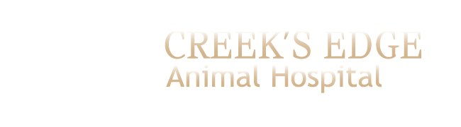 Logo for Veterinarians Hainesport | Creek's Edge Animal Hospital