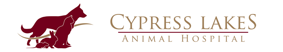 Logo for Veterinarians Cypress | Cypress Lakes Animal Hospital
