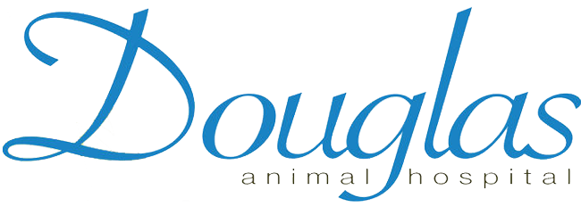 Logo for Douglas Animal Hospital Osseo, Minnesota