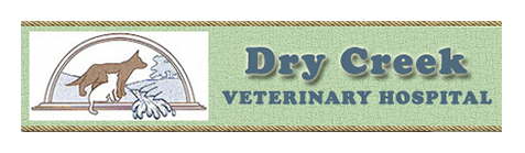 Logo for Veterinarians Galt | Dry Creek Veterinary Hospital