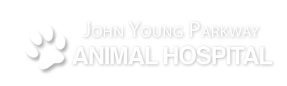 Logo for John Young Parkway Animal Hospital Orlando, Florida