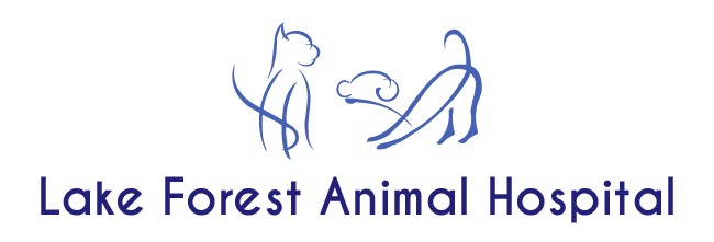 Logo for Lake Forest Animal Hospital Gaithersburg, Maryland