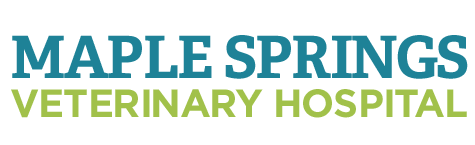 Logo for Maple Spring Veterinary Hospital Gaithersburg, Maryland