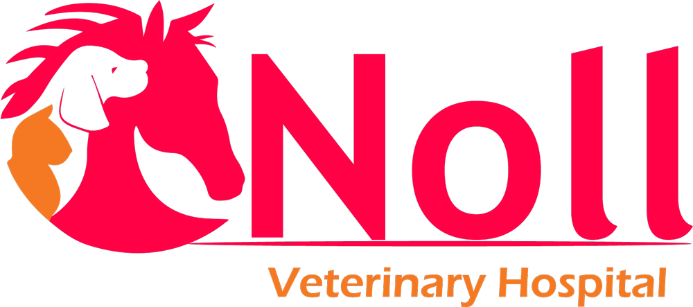 Noll Veterinary Hospital