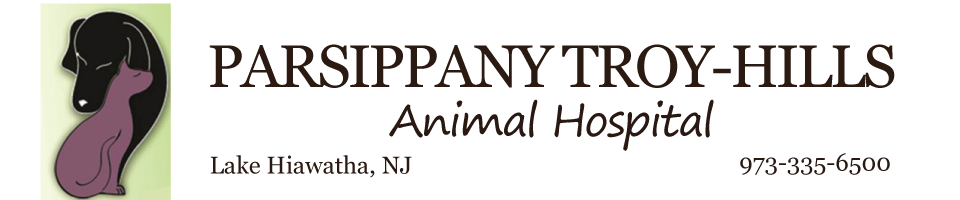 Logo for Veterinarians in Lake Hiawatha, NJ | Parsippany Animal Hospital