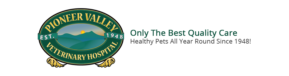 Logo for Veterinarians Greenfield | Pioneer Valley Veterinary Hospital, Inc