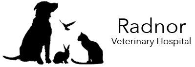 Radnor Veterinary Hospital