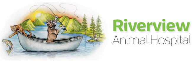 Logo for Riverview Animal Hospital Vancouver, Washington