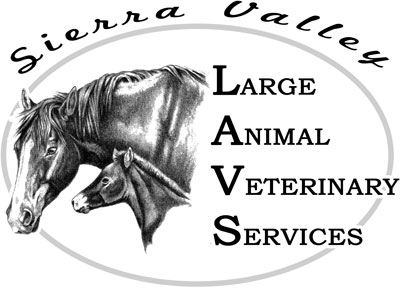 Logo for Veterinarians Chilcoot | Sierra Valley Large Animal Veterinary Services