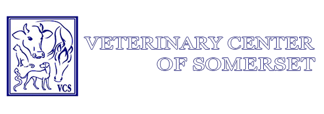 Logo for Veterinarians Somerset Kentucky | Veterinary Center Of Somerset