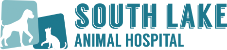 Logo for Veterinarians Clermont, Florida | South Lake Animal Hospital