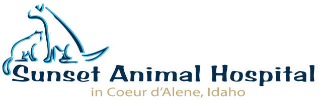 Logo for Sunset Animal Hospital in Coeur d' Alene, Idaho