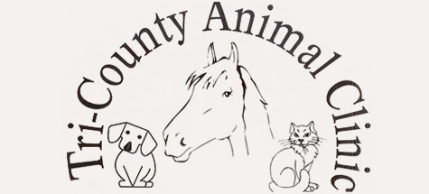 Logo for Veterinarians in Waynesboro | Tri-County Animal Clinic