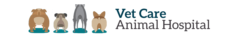 Logo for Veterinarians Greenville | Vet Care Animal Hospital